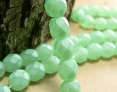 Matte Mint Green Czech Glass Beads Frosted 6mm Round Firepolished (25)