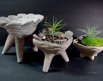 3 Carved Concrete Art Bowls /Planter Centerpiece Set