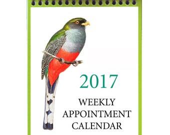 2017 Weekly Calendar--Original Bird Art