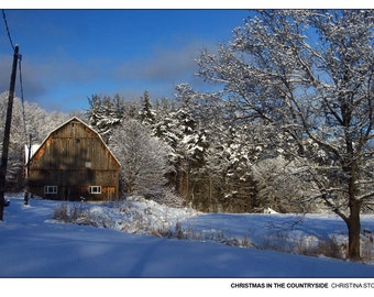 Christmas in the Countryside - Original Photography Postcard by Christina Stoppa, Ontario, Canada