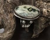 Ocean Jasper Sterling Silver Ring