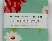 """Moda Scrumptious MINI Charm Pack  2.5"""" squares - HTF OOP - Bonnie & Camille"""
