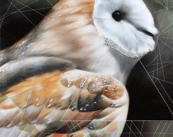 Signed, limited edition owl print