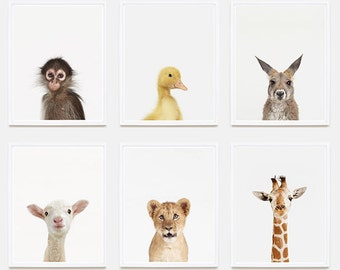 Animal Nursery Art: Duckling Little Darling.