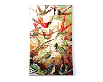 Hummingbirds decoupage glass tray