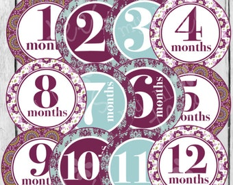 MONTHLY IRON ONS Decals or Monthly Stickers - 12 Monthly onesie iron on heat transfers - for Baby Girl - violet - purple, floral (Style#A16)
