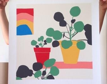 Pilea Print // 50x50 // Pilea Illustration // Colourful Print // Botanical Print // Botanical Illustration // Square Print