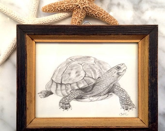 Turtle Original Small Drawing in Vintage Frame | Decor | Small Art | Framed Art | Beach House | Gift |Self Gift