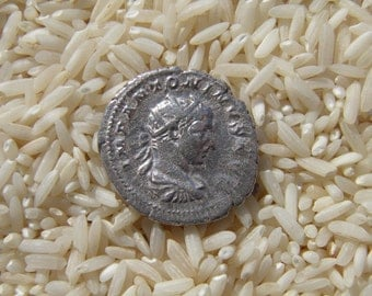 Authentic Ancient Roman Coin of Elagabalus, 204 to 222 A.D. Authenticated by David Sear