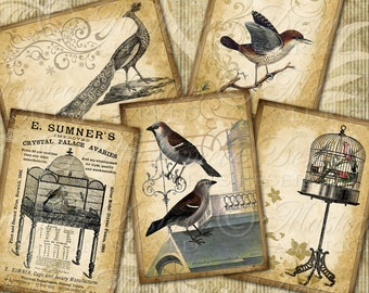 Aviary Ornate Printable Hang Tags / Birds / Birdcage / Peacock / Owl / Nest / Gift Tags - Instant Download and Print Digital Sheet