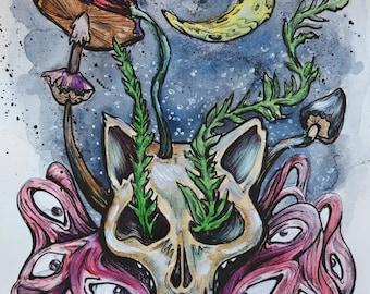 Cat Skull Illustration