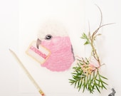 Galah and Iced Vovo A4 Print