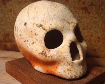 Zombie Pepper Wood Fired Skull