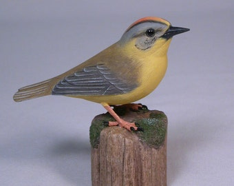 Golden-crowned Warbler Hand Carved and Hand Painted Wooden Bird