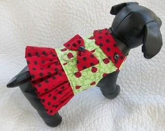 Dog  Ruffled  Harness Vest Ladybug with collar and ruffle  Custom  Made  dog or cat