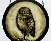 Traditional Stained Glass, Little Owl, great gift!