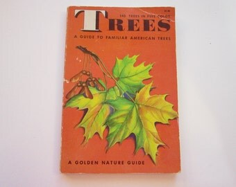 vintage GOLDEN book - TREES of North America - A Guide to Field Identification - circa 1956