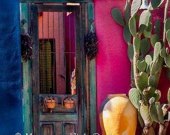 Antique door //  wood Garden Door // Tucson Arizona Barrio // southwestern decor //old door // Mexican decor // Southwestern decor
