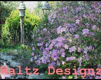 Purple Garden Artwork Page