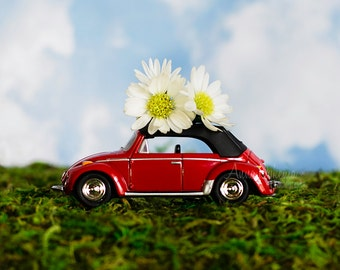 Midcentury Modern Nursery Decor - VW Bug in Meadow - still life Volkswagen red green blue daisy flower nature toy car photography
