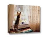 Large Canvas Wall Art Decor Yorkie Yorkshire Terrier