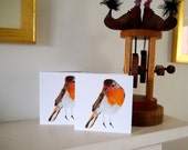 Robin Redbreast Christmas cards Pack of two holiday cards with Robin print 5x5 inch