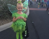 TinkerBell Costume with wings