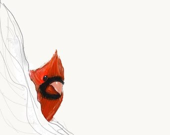 "Northern Cardinal Print, Bird Illustration, Digital Drawing, Animal Wildlife Art Postcard  4"" x 6"" NC2"