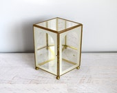 Vintage Curio Display Box, Geometric Glass Container with Mirror, Frosted Glass Terrarium