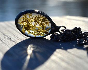 Real Moss Necklace, Terrarium Necklace, Forest Floor, Nature Jewelry, Romantic Gift, Moss Pendant, Terrarium Jewelry (2188)