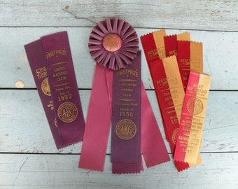 11, Vintage 1960's Dog show ribbons Red and Yellow , Purple , One w/ rosette