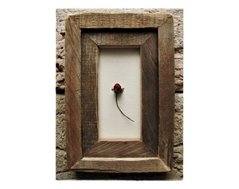 Strawberry ..|.. Berry Framed in Weathered Wood