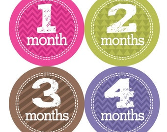 Baby Monthly Stickers FREE Baby Month Milestone Sticker Baby Girl Bodysuit Stickers Baby Month Stickers, Pink Purple Brown Green 038G
