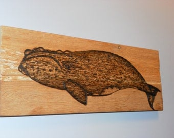 Pyrography Portrait of a Southern Right whale on cedar made to order