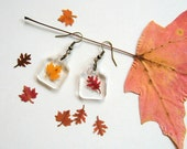 Real Autumn Leaf Woodland Earrings - botanical jewelry, pressed leaves, leaf earrings, small earrings, maple leaf, oak leaf, Autumn, ooak