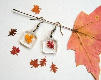 Real Autumn Leaf Woodland Earrings - botanical jewelry, pressed leaves, leaf earrings, small earrings, maple leaf, oak leaf, Autumn, ooak