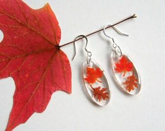 Falling Leaves - Real Autumn Leaves Woodland Earrings - Botanical jewelry, leaf earrings, leaves, oak leaf, maple leaf, Fall, natural, ooak