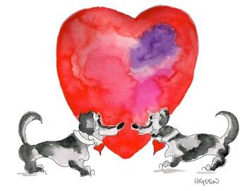 Valentine's Day. Dachshund's Love!