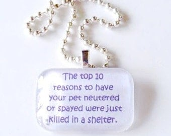 The top 10 reasons to have your pet neutered or spayed were just killed in a shelter glass tile pendant