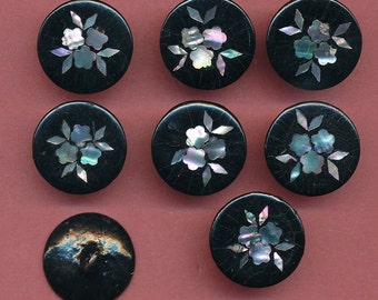 Antique Buttons - Set of 8  Paper Mache with Floral Pearl Inlay  ca. 1890's