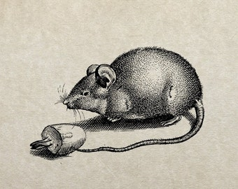 80% OFF - Mouse Rat with mushroom (Image 7d) - PNG / JPG Digital Image Download - Transfer / Iron on / Clip-art / Commercial Use