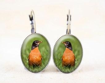 Robin Earrings - Bronze Bird Earrings, American Robin Photo Earrings, Red Robin Jewelry Earrings, Robin Bird Jewelry, Bird Photo Jewelry