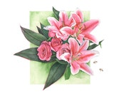 Roses and Lilies watercolour painting - print A3 size largest print - RL1116 - Botanical painting - Pink Lilies watercolor painting