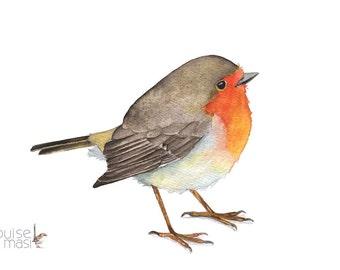 Robin print, Robin watercolor painting, robin painting, A4 size print, robin print of watercolor painting R7816, woodland animal art