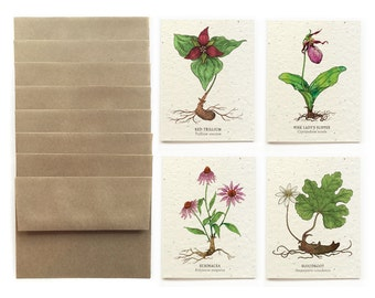 At-Risk Flowers - Set of 8 Plantable Seed Greeting Cards