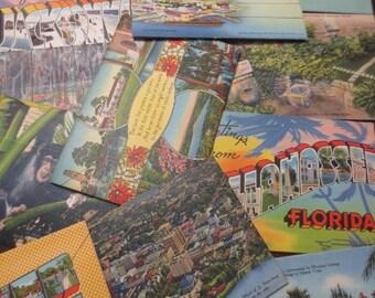 Vintage Florida Souvenir Folder Lot Travel 13 pc Assortment Teich Tichnor Color Pictures Cityscapes Nature Landmarks Paper Ephemera Tourism
