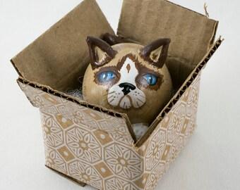 Cat in Box Gourd