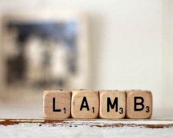 Vintage Letter Cubes LAMB