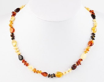Baltic Amber Necklace Adult