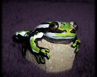 Green and black frog hand sculpted on a rock, Hypsiboas semiguttatus